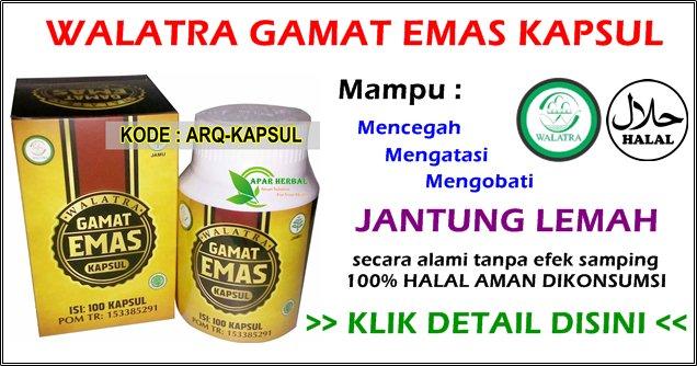 http://www.terapiobatherbal.web.id/qnc-jelly-gamat-kapsul-walatra/