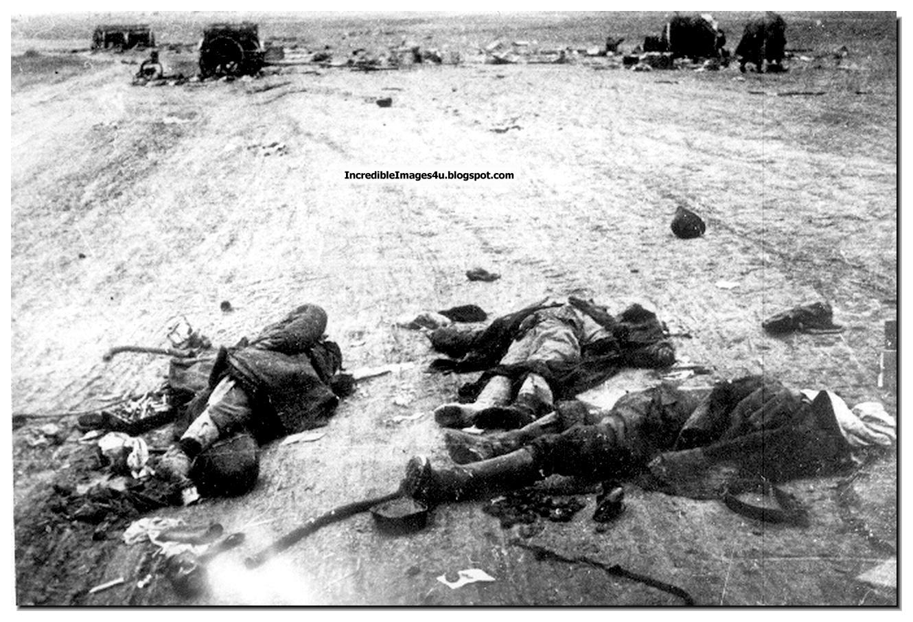 the battle of stalingrad Stalingrad was one of the most decisive battles on the eastern front in the  second world war the soviet union inflicted a catastrophic defeat on the  german.