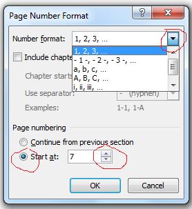 Cara Menggunakan dan Fungsi Page Number Otomatis Pada Halaman