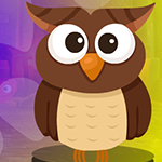 G4K Brown Owl Escape