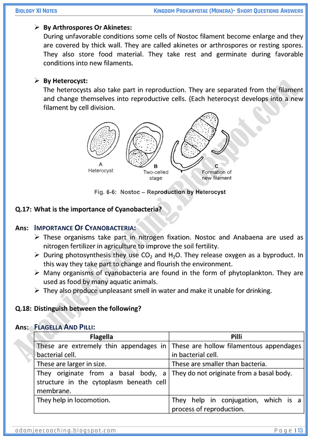 kingdom-prokaryatae-monera-short-question-answers-biology-11th