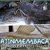 Pengenalan Jenis Ikan Baung