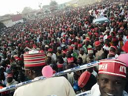 Kano Election Results: PDP Supporters Celebrates  Early Lead In Kano