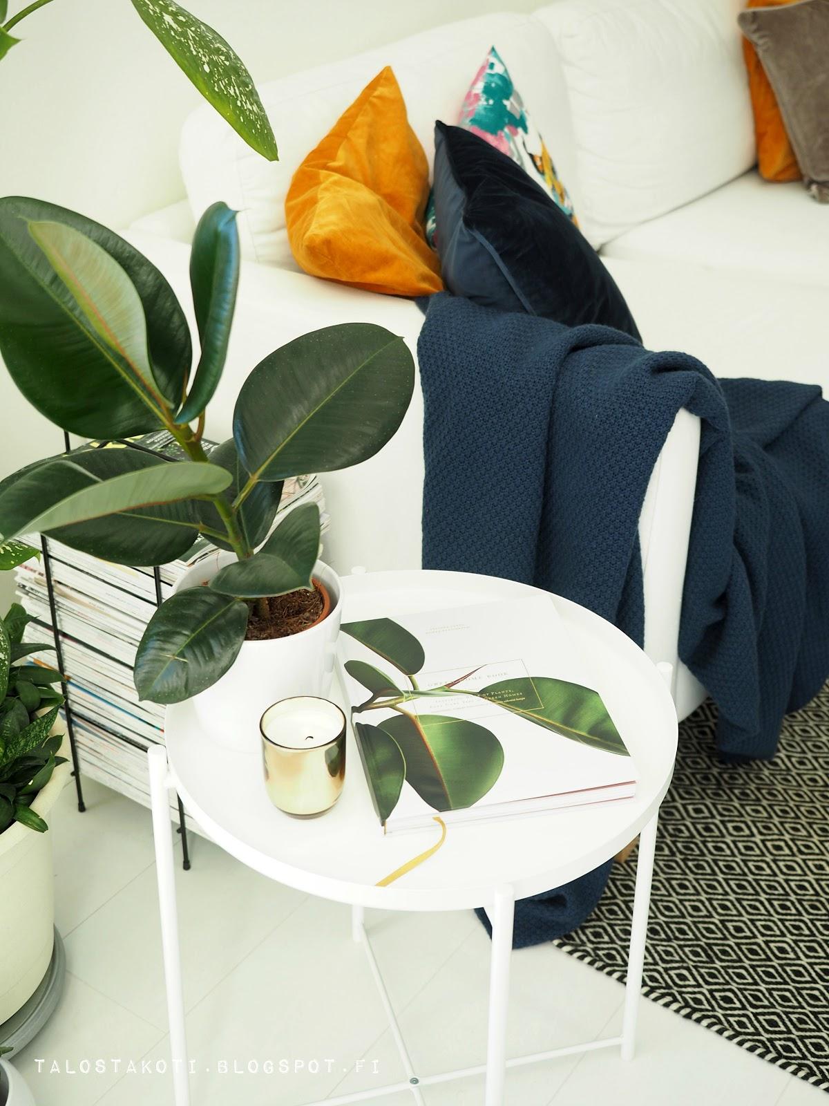 Green Home Book, olohuone, viherkasvi