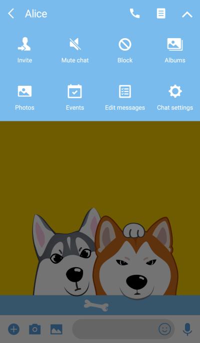 Peekaboo puppies