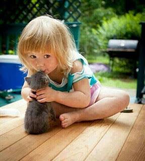 Kedilere Yapılması Gereken Aşılar