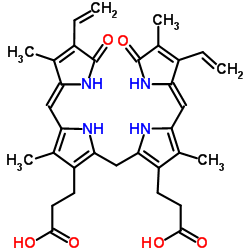 Bilirubin Metabolism: MCQ ~ BASIC MEDICAL SCIENCES
