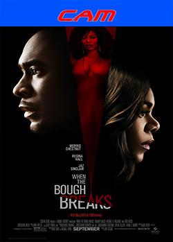When the Bough Breaks (2016) CAM