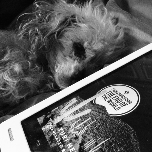 A black and white photo of Murchie curled up alongside a white Kobo with the cover of Signs Preceding the End of the World on its cover. The side side of the photo cut out quite a bit of the cover as the Kobo is arrived diagonally across the shot, but the visible portion features cacti on a hill, with the book's title contained inside a white circle rising over the hill.