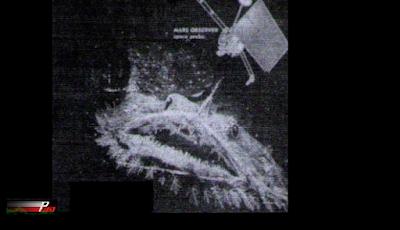 Ikan Raksasa Terpotret Terbang Di Antariksa