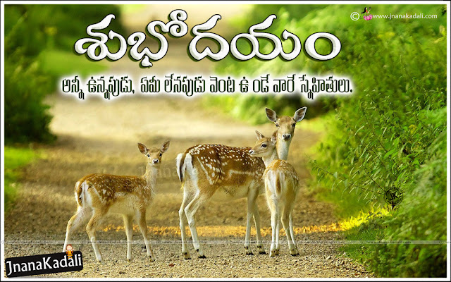 good morning in telugu, Telugu Subhodayam, best good morning motivational Quotes