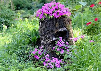 Maceta en un tronco de árbol con flores silvestres