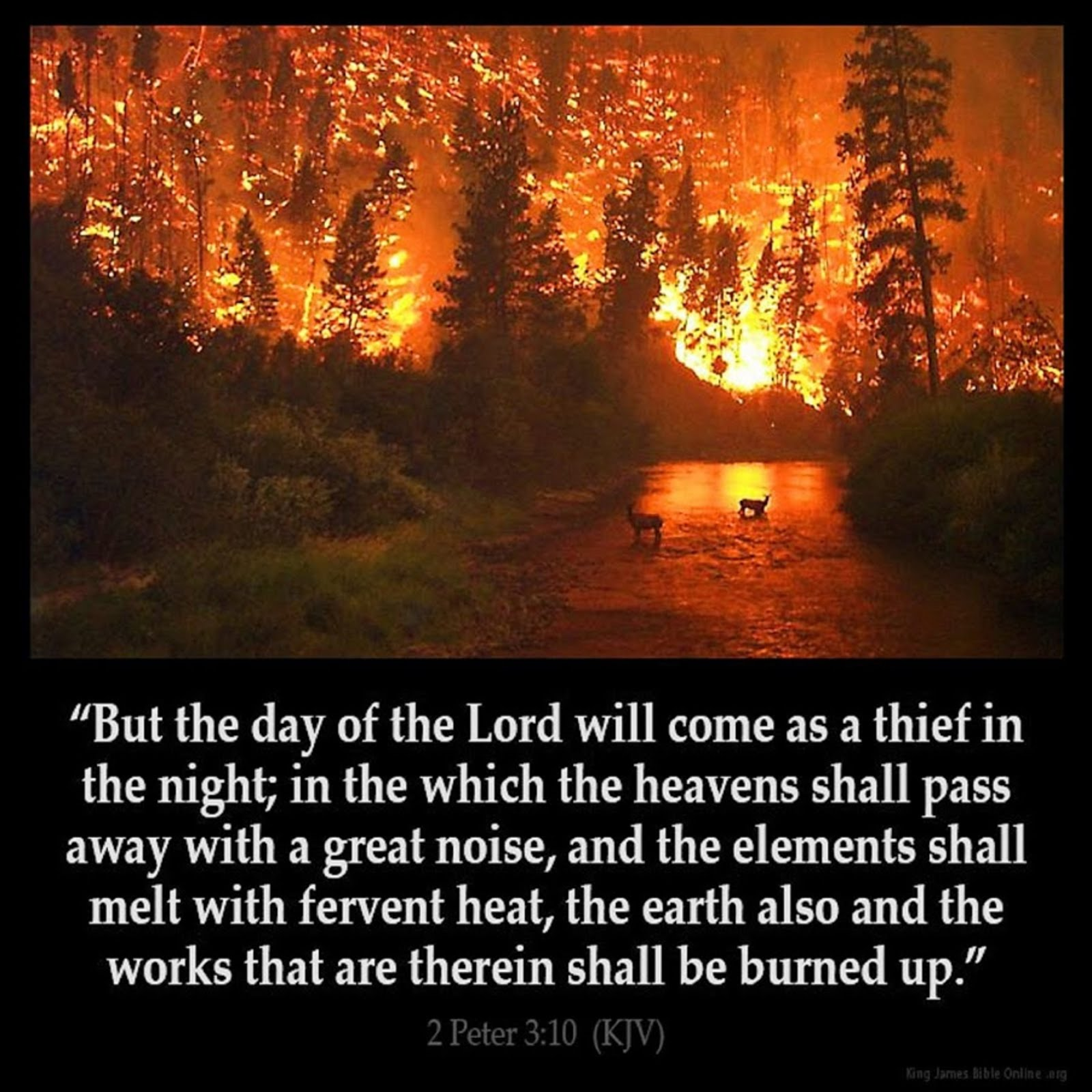 THE DAY OF THE LORD WILL COME LIKE A THIEF IN THE NIGHT