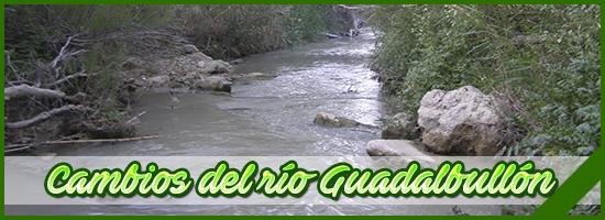Banner 9 VerdeZona