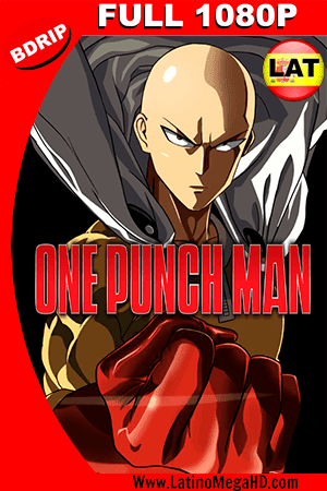 One Punch Man Temporada 1 (2015) Latino FULL HD BDRIP 1080P ()