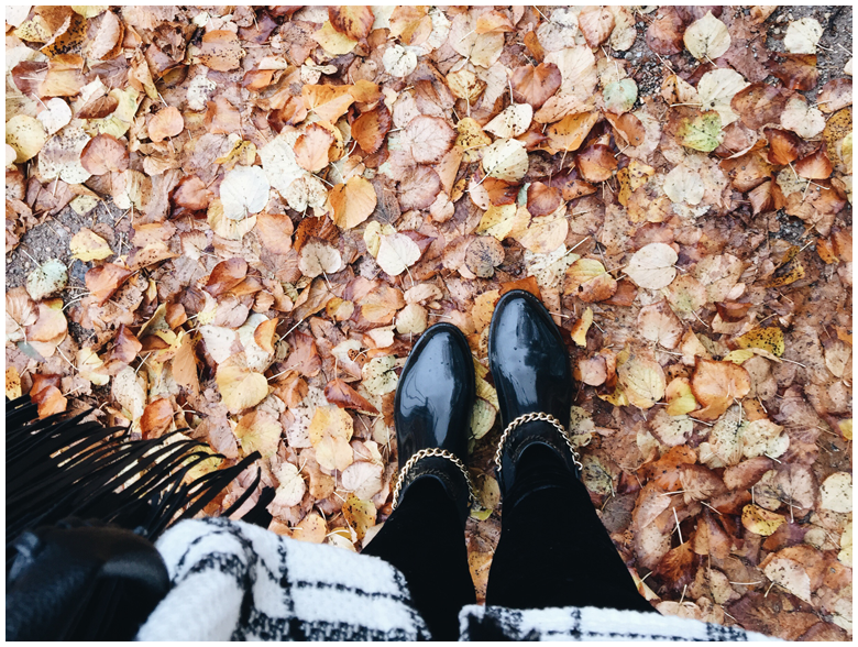 my love for… autumn