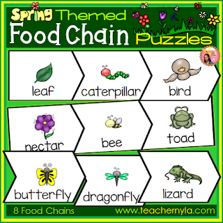 food chain printables