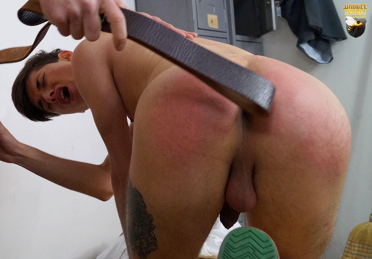 Hornet Gay Strap On