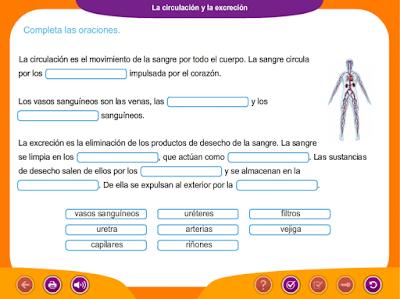 http://ceiploreto.es/sugerencias/juegos_educativos_6/1/6_La_circulacion_y_la_excrecion/index.html