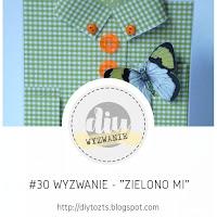 https://diytozts.blogspot.com/2018/04/30-wyzwanie-zielono-mi.html