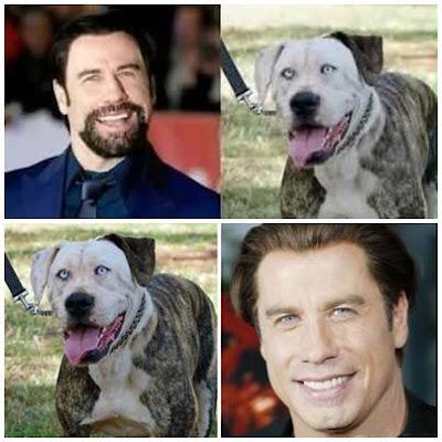 John Travolta con cachorro