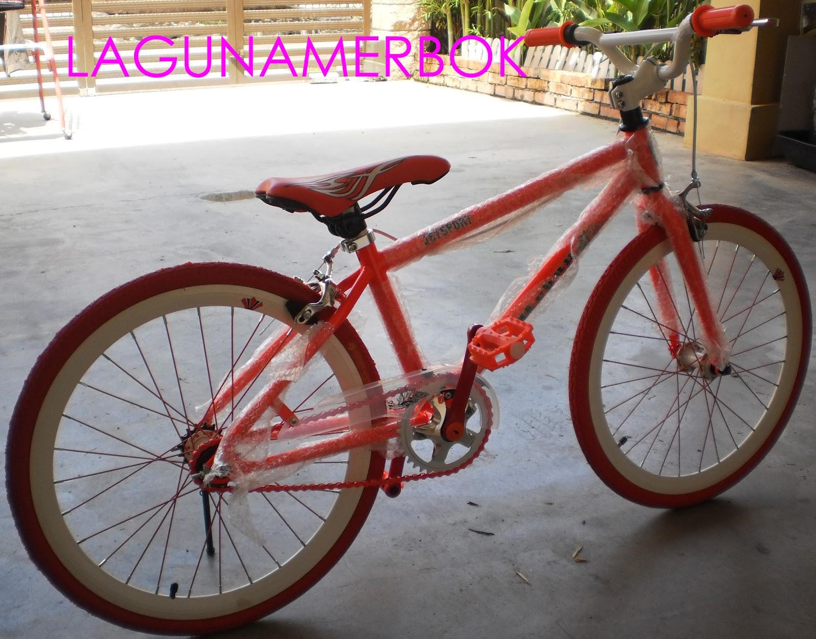 LagunaMerbok: Basikal Fixie No. 1 Di Sg. Petani