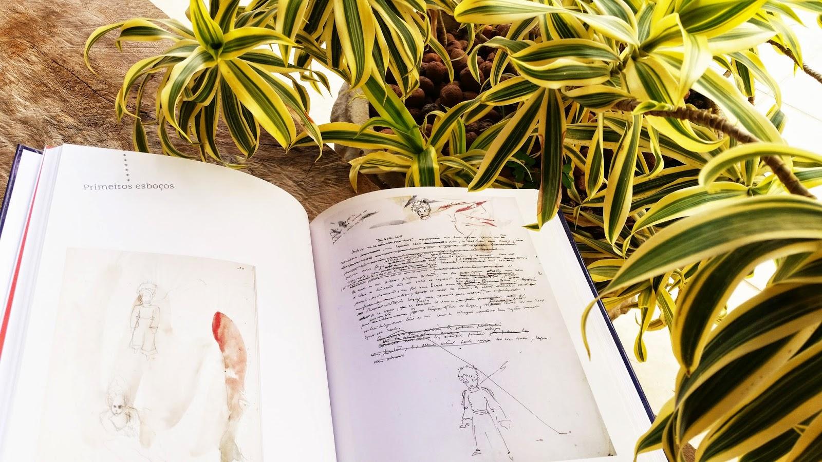 """UNIVERSO DOS LEITORES: Razões para ter o livro """"A Bela"""