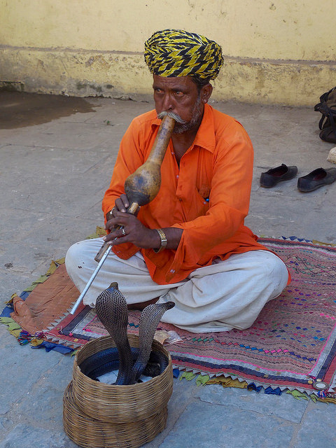 Snake Charmer outside city palace