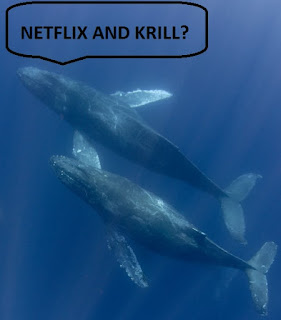 netflix and chill whales in love