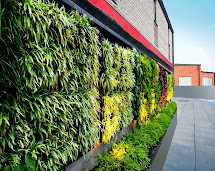 Technic Network Marketing Sdn Bhd Vertical Garden