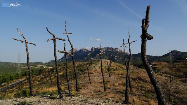 Montserrat, Massana, bosc de les creus