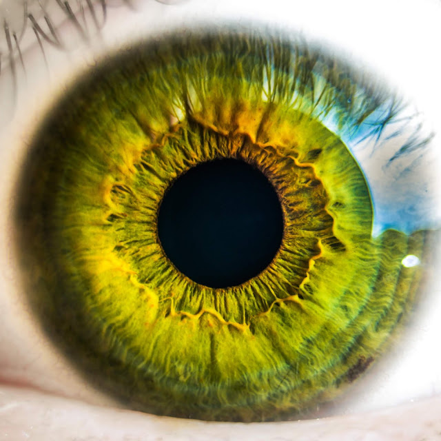 DeepMindAI partners with Moorfields Eye Hospital to develop innovative sight-saving technology