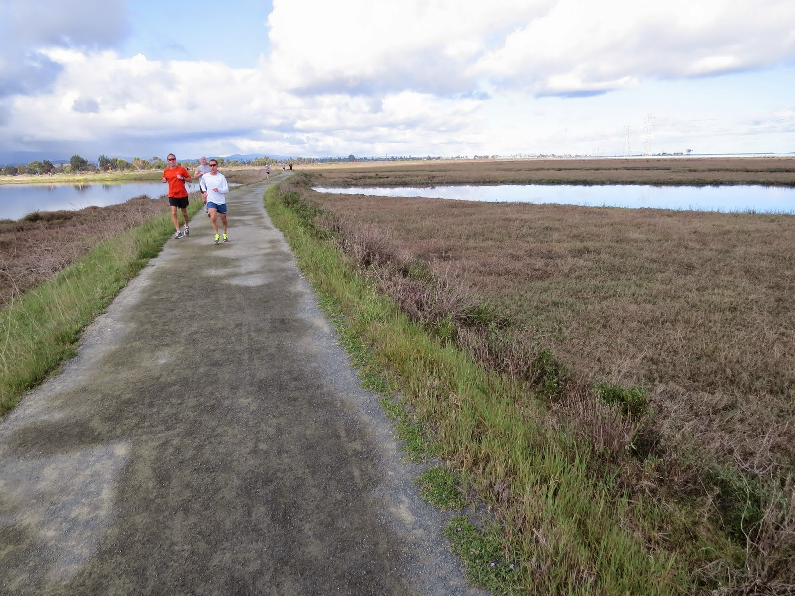 Palo Alto Baylands - trail