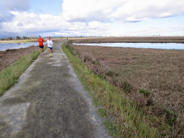 Bay Area Birding: Palo Alto Baylands - trail
