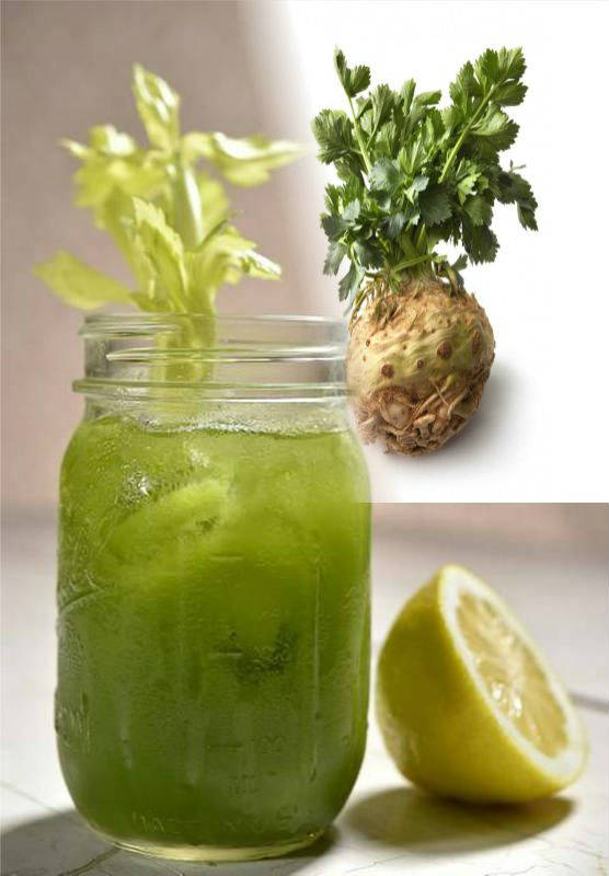 CELERY – Juice and Herb as a Remedy