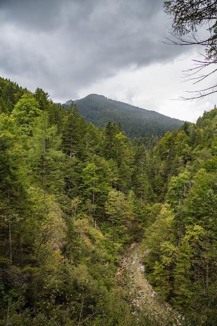 Rundweg Röthelmoos Almen – Weitsee  Wandern Ruhpolding  Wanderung Chiemgau 04