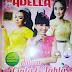 Download Kumpulan Lagu 2017 Om Adella Mp3 Terbaru Full Album