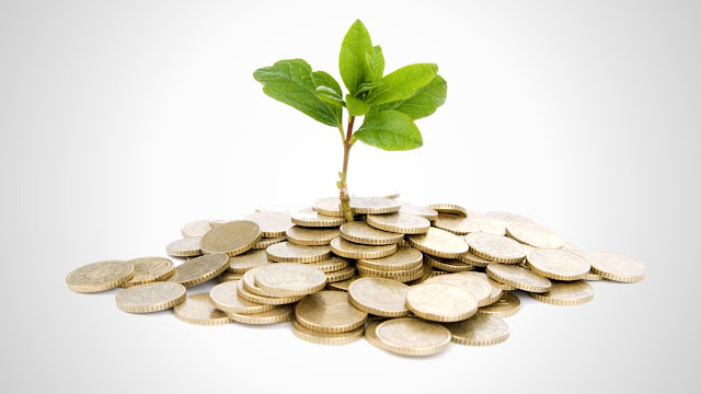 Frugal Finance Raising Startup Capital Tips Entrepreneur
