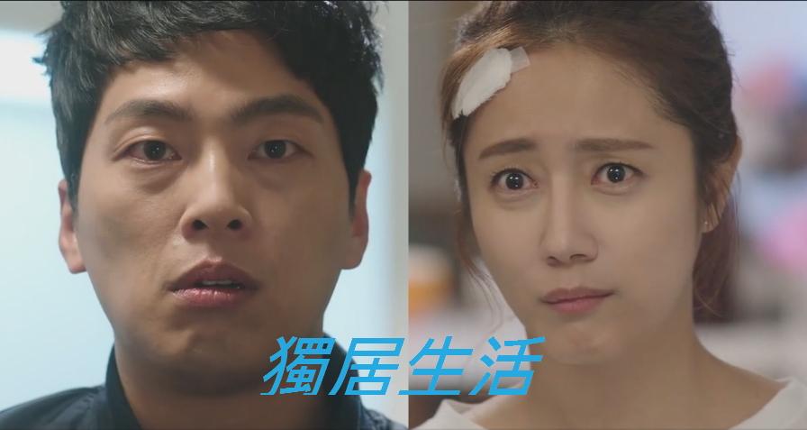 2016韓劇 獨居生活線上看