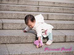 茉莉在花園神社玩耍照