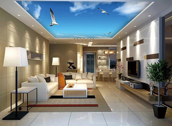 Mẫu trần phòng khách in bầu trời 1