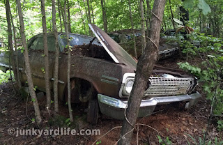 As found condition of the 1963 Impala SS 4-speed abandoned in Alabama woods.