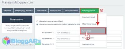 Masuk ke Kelola DNS Domain