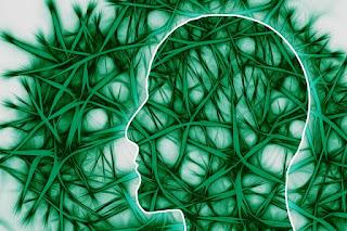 Kesempurnaan Otak Manusia