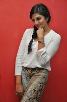 HeyAndhra Vimala Raman Latest Glamorous Photos HeyAndhra.com