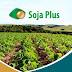 Soja Plus: Saito destaca desenvolvimento sustentável da agricultura de MS