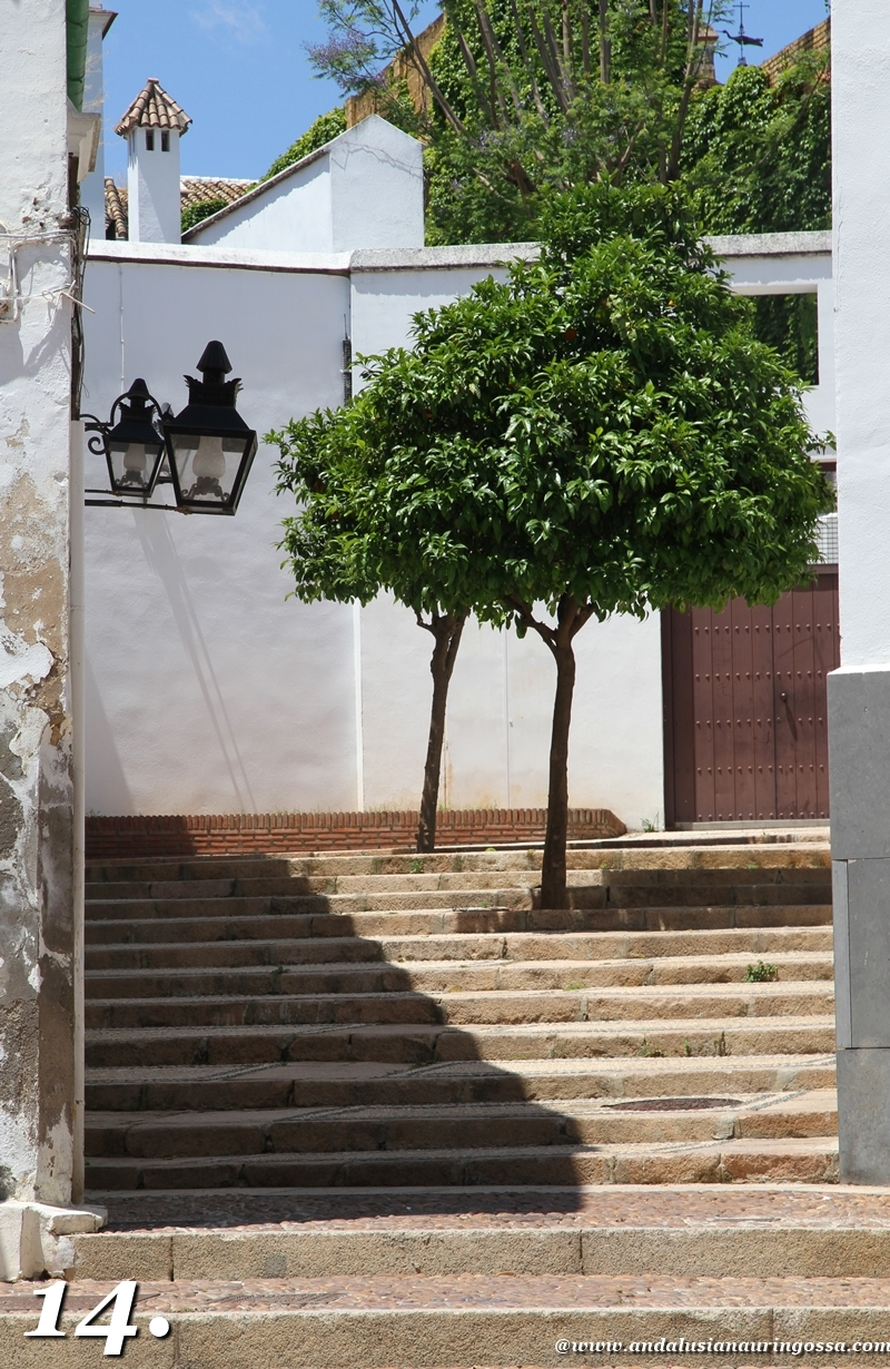 Andalusian auringossa-ruokamatkablogi_Cordoba