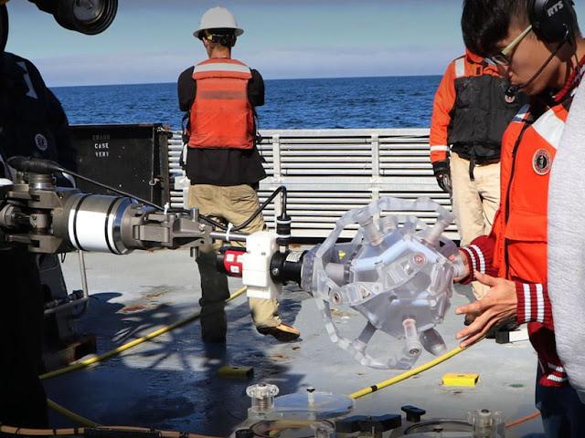 robot-dodecaedro--captura-delicadas-criaturas-marinas