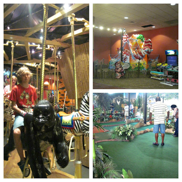 indoor theme park carousel, miniature golf