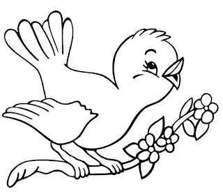 Realis Bird Coloring Sheet Images